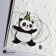 Party_Pandas_7
